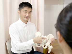 骨盤の模型で左右の骨盤の働きを説明しています